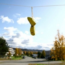 Wooden birdhouses shaped like shoes hang over urban power lines like sneakers, giving the birds a place to rest.