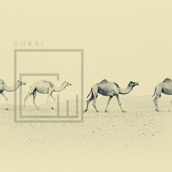 Dubai by Christopher Wilson
