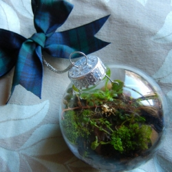 A step by step tutorial showing how you can make one of these lovely, garden-filled terrarium ornaments of your own.