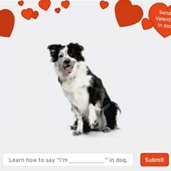 "Have you ever wondered what your dog is trying to say? This new site for Purina might help explain. It teaches you how to ""speak dog""."