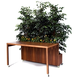 Designer Elisa Sighicelli came up with a great idea for a fresh desk, Il giardino segreto. Available from Edizioni Plusdesign made of rosewood and birch.