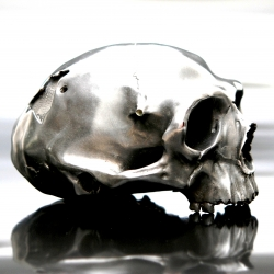 FAKASAKA skull sculpture - table lamp in bronze - Fakasaka is a design-oriented company dedicated to making innovative and exclusive furniture, lightings, decoration objects and jewelry.