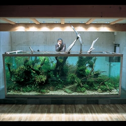 Currently obsessing on the incredible fishtank worlds of Takashi Amano