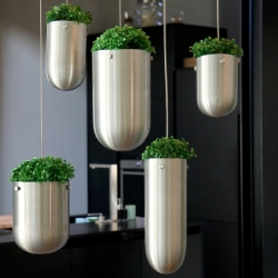 FLOATING GARDEN, a new concept by Gabriella Asztalos.