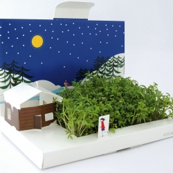 PostCarden's Winter Wonderland design is a mini garden you can send in the post! It helps to liven up the predictable Christmas mail, transforming into a living green gift in a matter of days