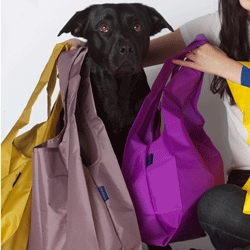 New fall colors! BAGGU, everyone's favorite reusable shopping bag - now in 36 colors. Shown: Caper, Oyster & Electric Purple.