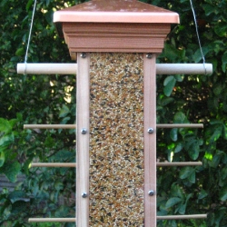 Modern Design six perch finch feeder.