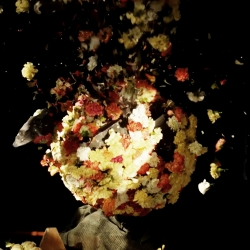 The Flower Bomb a new short by Hans Crafted for Analog.