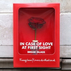 If any unexpected flames of love start flickering in Paris for Valentine's Day today, the Cupid-shot lovesick fools will be ready....In case of love at first sight, break glass!
