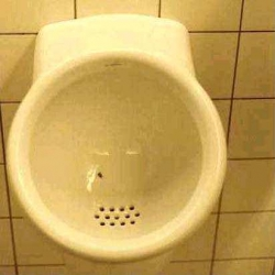 "Dutch manufacturers realized that a fly painted on the porcelain of a urinal nearly always became a ""target"" for men using the facility - positioned in precisely the right place for minimal spillage or splashback"
