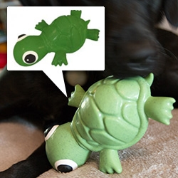 Cycle Dog's 3-Play Turtle Dog Toy. Squeaker in the head, treats go in his belly, floats, and it's made from eco-last material from post consumer recycled rubber.