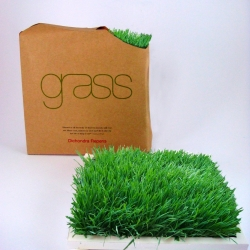 """Grass"" squares are designed to give a natural touch to the office or home by placing them freely or according to feng-shui. Unlike ordinary flowers, ""grass"" is completely natural, a piece of earth, that grows indoors with minimal care."
