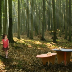 Skyline Design's Greenplay furnishings for children's environments include tables, seating, shelving, and play spaces.