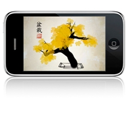 We love the new application iBonsai for iPhone. Create your own bonsai tree in 30 seconds...