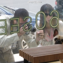 Documenting an unexplainable phenomenon: people taking pictures of another persons dog. This blog takes it further aptly titled Photos of People Taking Photos of my Dog.