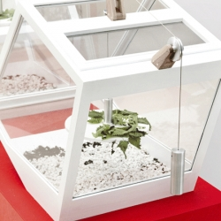 At Valcucine Showroom, four miniature transparent architectures by Stefano Citi and Simone Simonelli, which offer uncommon points of view for insect observation.