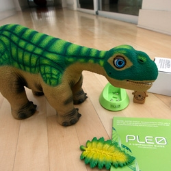 Finally ~ unboxing of Pleo ~ my latest house guest for the next few weeks... now you can see the packaging the ended up with, his encounter with the roboraptor, and more to come for sure...