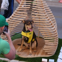 "Barkitecture 2010. Austin's best architects and designers put their skills to creating dog houses. This is Studio Autoforma's entry which won ""Most Unusual""."