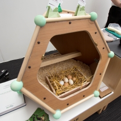 The Urban Hen House by Lucie Bateman, spotted at New Designers.