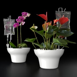 "Vitamin Living expanded on the I.V. Plant Pot ~ with the Bio Logic Collection ~ ""Smart Ideas for Plants"" ~ see the full line of brilliantly functional and well designed new homes for your indoor plants."