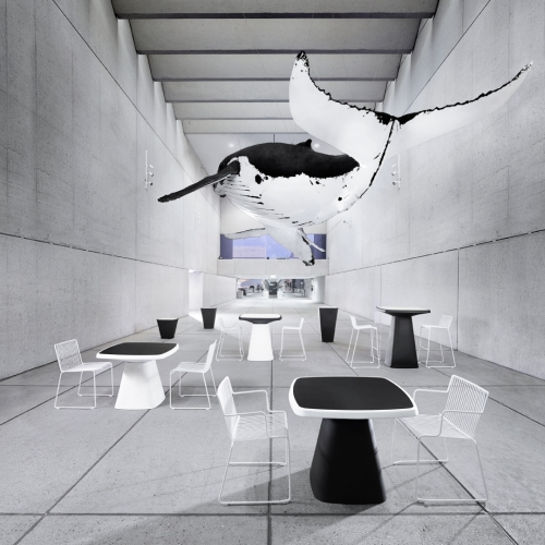 The very stylish Kono Table and Lerod Chair by Derlot Editions, shot at Brisbane Museum