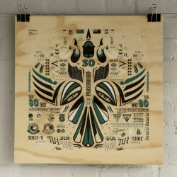 Influenced by making models as a kid and Tui's (a native bird) NZ designer Walter Hansen just released his Kowhai Squadron series. This print is on ply wood.