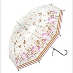 Modern fashion umbrella inspired from Japan. Clear rain umbrella.