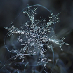 Russian photographer Alexey Kljatov captured snowflakes with a DIY macro lens he made out of a $50 lens.