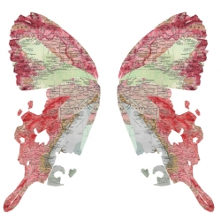 This is a material exploration of a multi-layered process using printer toner, and maps to create this butterfly. It took a couple of hours to carefully smash the ink onto the paper.