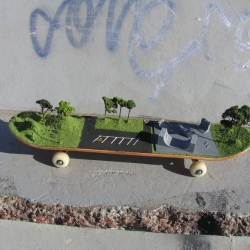 It's a skate park, on a skateboard, in a skate park.
