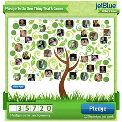 "Nice little interactive Facebook app for JetBlue's ""Pledge To Do One Thing That's Green"" campaign"