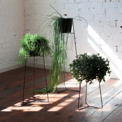 Wire Pot Plant Stands, a collaboration between Trestle Union and Studio Home.