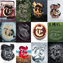 The New York Times Style Magazine's iconic T logo will be missed. Browse these slideshows for a retrospective of some amazing artist interpretations of the classic logo ...