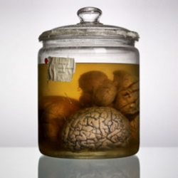 Photographer Adam Voorhes and journalist Alex Hannaford document and find the history behind a collection of malformed brains at the University of Texas.