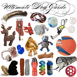 Bucky's Ultimate Dog Gift Guide ~ all of our favorites and wishlist of awesome dog toys...