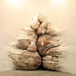 """Tapumes"" is a work by Brazilian artist Henrique Oliveira."