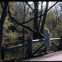 The full collection of shots from Charles W. Cushman, an amature photographer who traveled extensivly between 1938 - 1969.