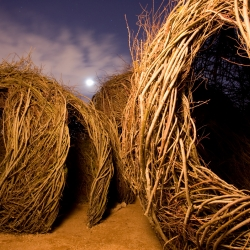 Patrick Dougherty creates wonderful large scale sculptures made from twigs and branches. Whether they are wrapped around trees, or bundled together to look like castles, his sculptures, are simplistic and beautiful.