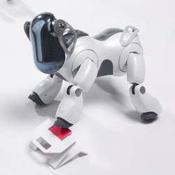 a toys for my robot dog at AIBO's Playroom