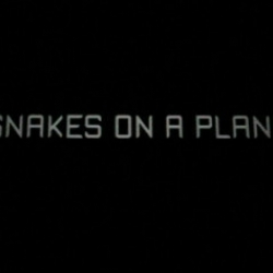 """Funny """"Snakes on a Plane"""" official trailer."""