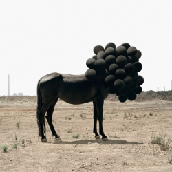 Andrea Galvani ~ something mysteriously surreal yet enticing about the photography...