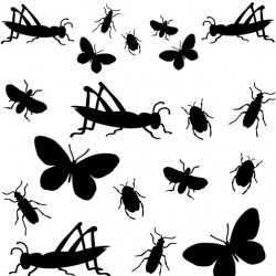 Bored Inc. has a cute new online shop open, and i'm liking the black vinyl insects.... also some cute bags and jewelry.