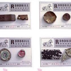 ROADKILL Magnets - like stuff roadkill vs animal roadkill - some cool bottlecaps and such