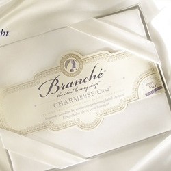 """I can't get over that one of the main selling points of the Branche Beauty Sleep Silk Pillow cases is """"prevents wrinkles by minimizing morning facial creases"""""""