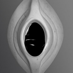 Aidan Salakhova's 'Black Stone', 2011.
