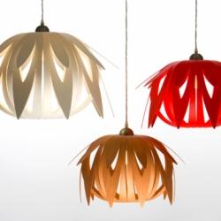 Protea 1 is a striking new lighting design range by Western Australian designer, Tim Whiteman, exploring both form and function.