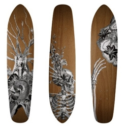 Travis Bedel has some nice designs available on skateboards on Zazzle