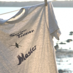 Loving this Surface Tension Master tee from Green Sustainabilitees - i was just sent one of their other tees and they are incredibly comfy, and have a cute little green tee printed in the bottom back corner