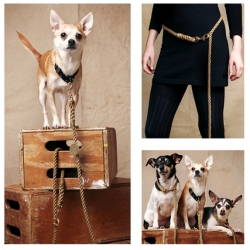 THE ANIMALS - use your FOUND leash to help raise public awareness for animal adoption. (Stunning FOUND collars arriving November '08!)