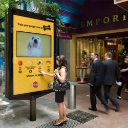 People teach and play with a virtual puppies in the interactive panels for a Pedigree Puppy.